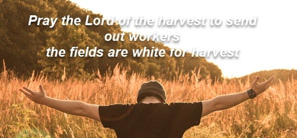 Pray the Lord of the harvest