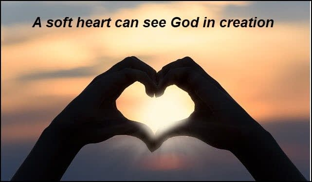 Soft hearts can see God in creation