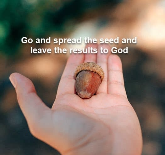 sow the seed
