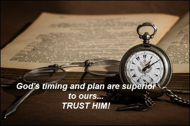 Trust God's Timing and Plan