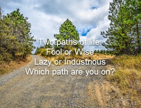 Which path are you on?