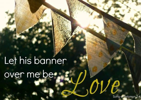 Banner over me is LOVE