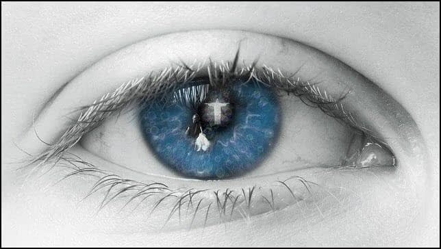 Mirrors reveal what the eye sees
