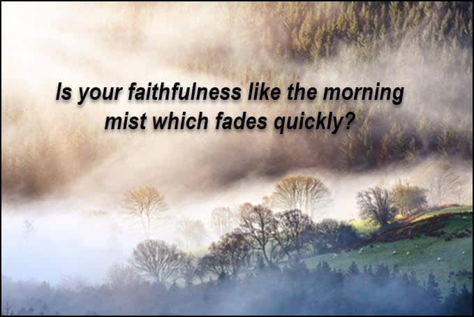 Faithfulness: like a morning mist or like the noonday sun?